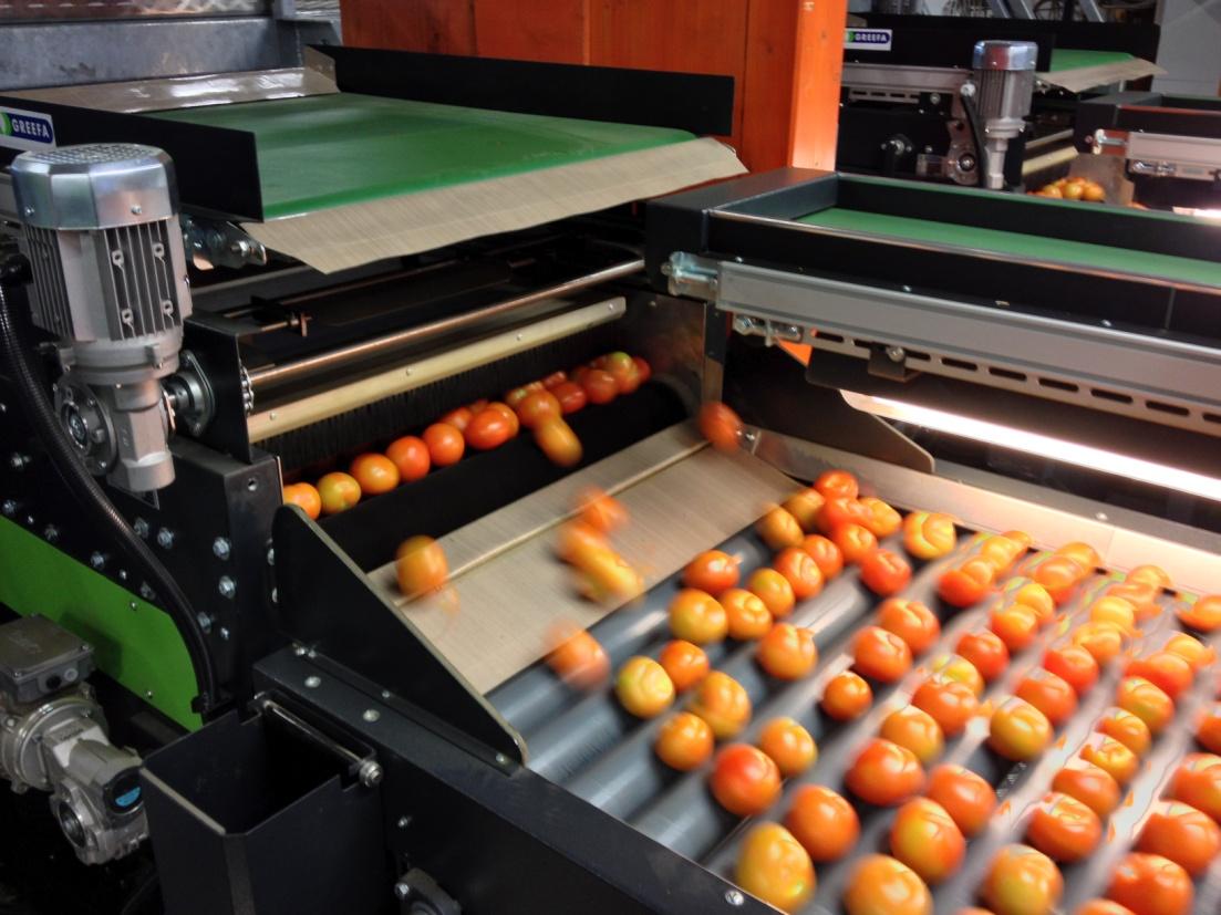 دستگاه سورتینگ میوه