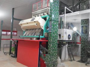 فروش دستگاه سورتینگ برنج